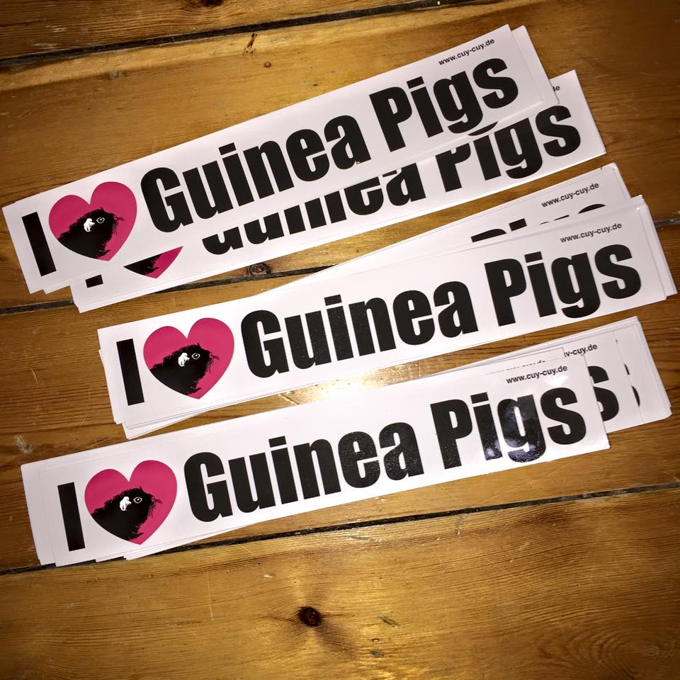 I Love Guinea Pigs - Aufkleber