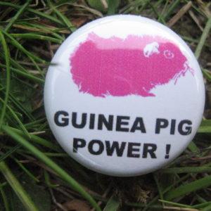 BUTTON Guinea Pig Power