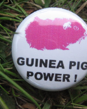BUTTON Guinea Pig Power