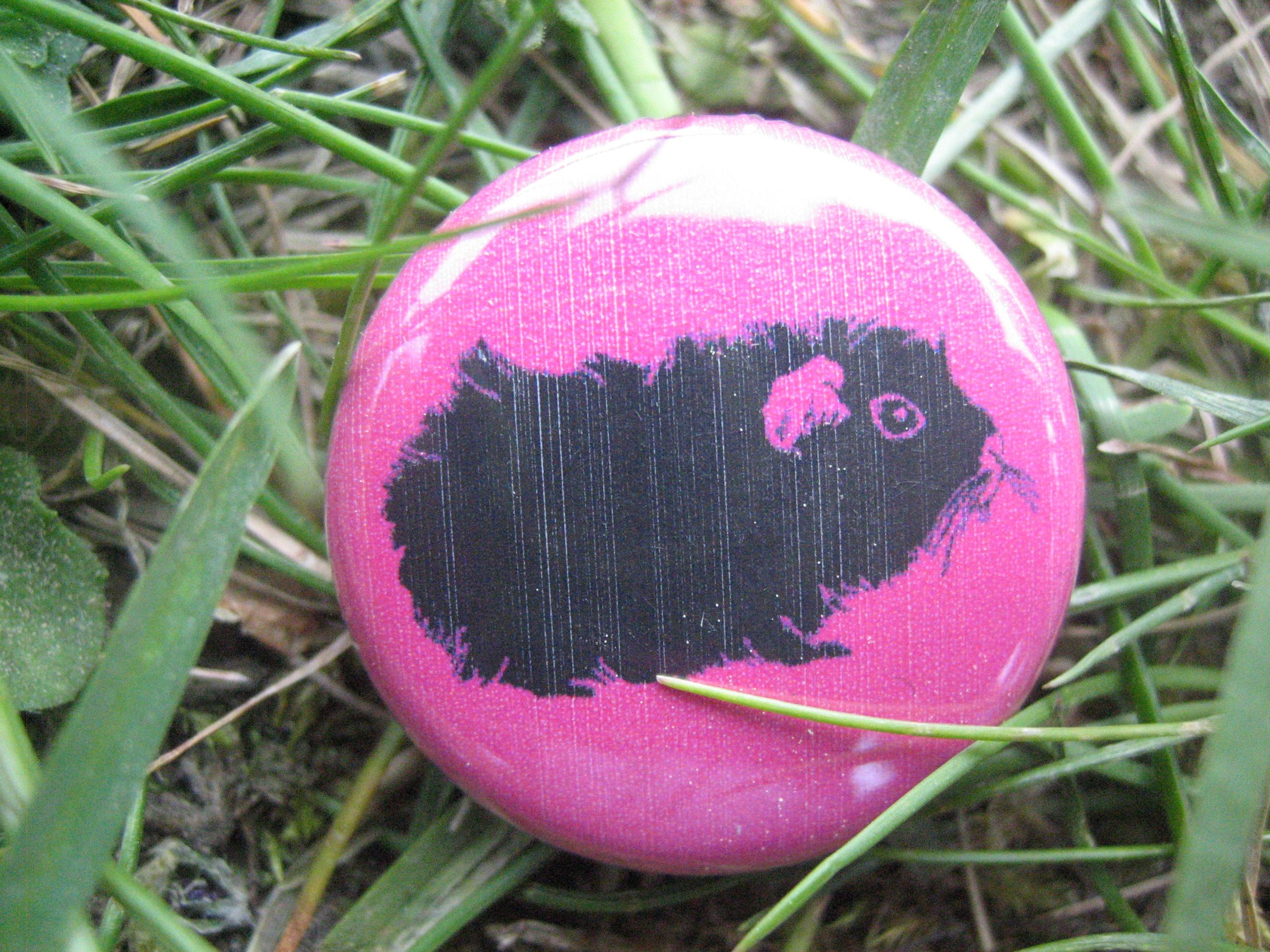 BUTTON Meerschwein auf pink