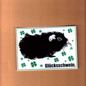 Gluecksschwein postkarte
